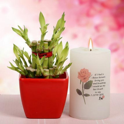 Lucky Bamboo With Candle