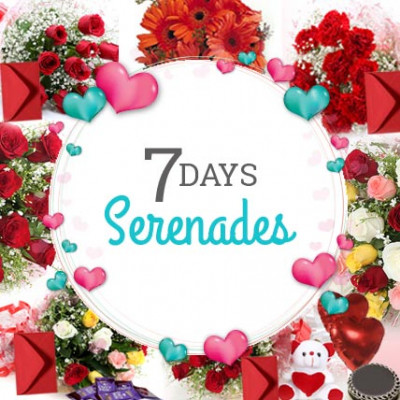 7 Days Valentine Week Full Of Love
