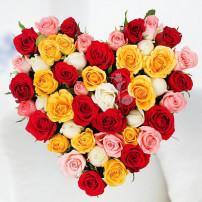Loving Heart- V
