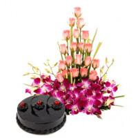 Colour N Cake Combo