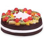 Wild Forest Cake