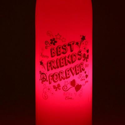 Best Friends Forever Lamp