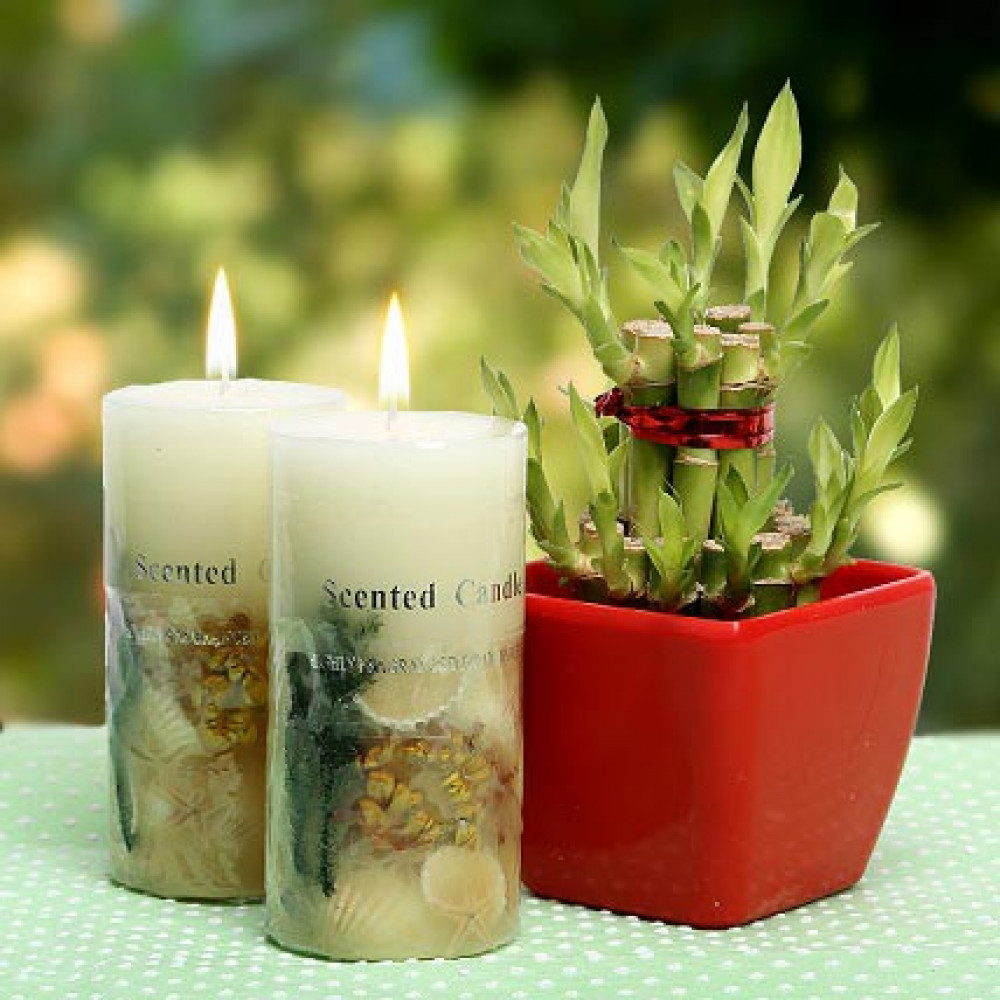 Scented candles online bruin blog for Candele on line