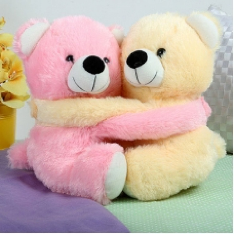 Hugging Teddy Duo Soft Toy