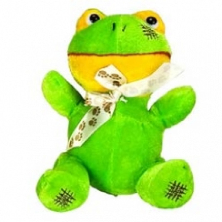 Cute Frog Soft Toy